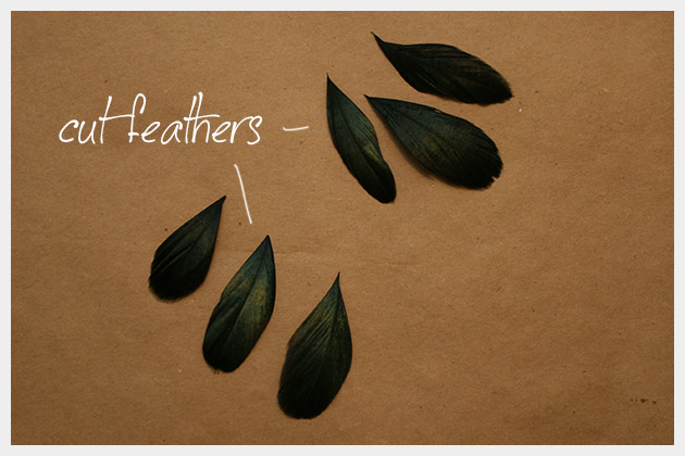 DIY Feather Earrings Feathers