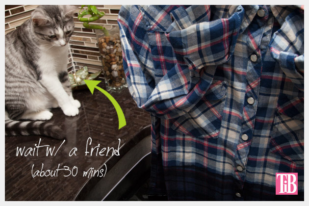 Dip Dye Plaid Shirt Mittens the Cat
