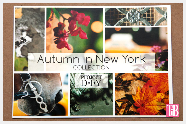 M & J Project DIY Autumn in New York