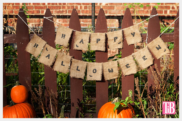 Halloween Banner DIY Photo Garden