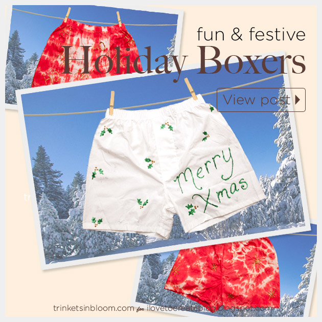 DIY Holiday Boxers by Trinkets in Bloom