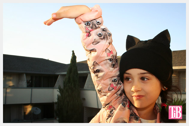 DIY Cat Beanie Photo 1